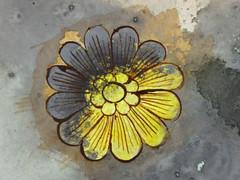 DSC09463 (scott_waterman) Tags: detail ink watercolor painting paper lotus gouache lotusflower scottwaterman