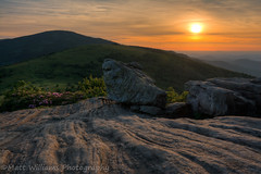 Happy Earth Day (Matt Williams Gallery) Tags: light sunset sun green nature rock clouds landscape outdoors spring nikon hiking rhododendron appalachiantrail earthday fineartphotography naturephotography landscapephotography roanmountain northcarolinamountains d7100 roanhighlands janebald mattwilliamsphotography