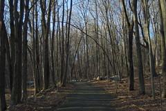 IMGP6702 Scoville new trail (shutterbroke) Tags: new pentax ct reservoir trail wolcott scoville k10d shutterbroke