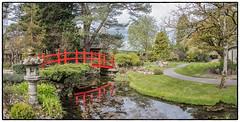 IMG_6819-Pano-Edit-Edit (Habitualmurph) Tags: ireland spring japanesegardens kildare canon70d