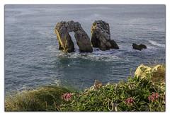 Urros 0002 (KANPAZ) Tags: flowers blue sea costa green water marina see mar puerta nikon natura paisaje rosas cantabria quebrada salitre azules cantabrico acantilados liencres hierbas acounts sedas urros d7000