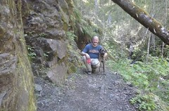 tillamookhike14 (jcravens) Tags: oregon forest hike campground galescreek stateforest tillamookforest