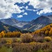 Mountains and Aspens
