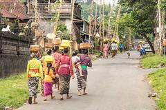 Elgantes Balinaises.   .....Look at my photo album on Bali (geolis06) Tags: street portrait bali asia streetportrait olympus asie sidemen indonsia 2015 indonsie balineseceremony balineseportrait crmoniebalinaise olympusem5 olympusm1240mmf28 geolis06 sidemenarea beautifulbalinesewomen womenportraitbalinese