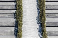 Dachau Memorial (Aerial Photography) Tags: people lines by holocaust mood outdoor aerial menschen dachau visitors dah deu stimmung besucher rectangles luftbild luftaufnahme gedenksttte sterben obb linien bayernbavaria deutschlandgermany nachdenken verlust kzgedenksttte rechtecke fotoklausleidorfwwwleidorfde 21042016 5sr13861