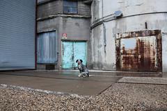 Hobbes. (Urban Camper.) Tags: dog minnesota cities minneapolis twin twincities hobbes dogphotography minneapolisphotographer minneapolisdogs dogsofminneapolis sitchabuttdownhobbes twincitiesdogs