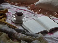 83/366 Cosiness (JessicaBelotto) Tags: cup photography book photo casa foto tea interior aconchego quarto livro fotografia cama projeto livros novo xcara ch fotogrfico leitura cosiness 366daysofhoney 366diasnoano