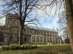 winchester Cathedral in Spring (neilalderney123) Tags: flowers church architecture cathedral hampshire winchester daffodils 2016neilhoward