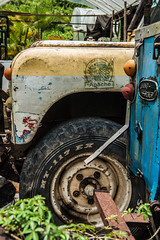 Apache (pranav_seth) Tags: white green art yellow decay rip landrover
