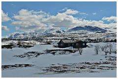 hytte med utsikt! (KvikneFoto) Tags: norge spring natur srtrndelag vr landskap rennebu nerskogen