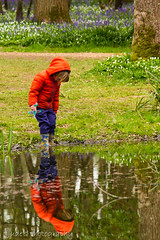 Discovering one's reflection (judethedude73) Tags: flowers trees water canon woods child