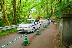 LHM_0114 (Leo Hartadi) Tags: park nature japan landscape saitama chichibu seibu