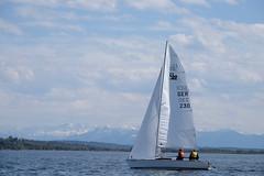 _DSF3933 (Frank Reger) Tags: regatta u20 dsc segeln segelboot diessen