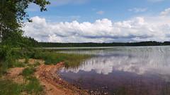 Lake | Sweden (kimberleyvdh) Tags: trees summer sun lake clouds mirror photo sand shine sweden reflect photograph