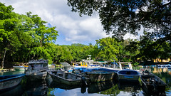 Dominican Republic - Boats at Rio San Juan (Polo-Foto) Tags: travel blue trees sea summer vacation sky cloud lake reflection tree green tourism nature water beautiful beauty forest vintage river french landscape boats paul island coast vacances countryside boat fishing holidays paradise day dominican republic view pentax cloudy dominicanrepublic outdoor background wave carribean sunny nobody retro tropical cloudporn k5 2016 rpubliquedominicaine republiquedominicaine riosanjuan tridon maratrinidadsnchez