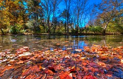 Monocacy Park Foliage (a2roland) Tags: normanzeba2rolandyahoocoma2roland monocacy park bethlehem pa pennsylvania norm landscape leaves leaf water color reflection trees branches skies sky blue orange red picture photo pic image camera nikon d5500 wide angle ultra lens bokeh focus smooth silky sharp blur delaware river lake pond © norman zeb photography all rights reserved