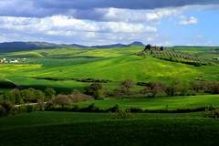 Val d'Orcia (annalisabianchetti) Tags: green hills tuscany siena valdorcia
