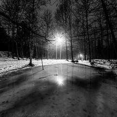 Night on the forest (Antti Tassberg) Tags: winter blackandwhite bw mist monochrome weather fog night forest espoo finland dark landscape prime evening twilight lowlight nightscape fisheye lensflare talvi 15mm mets ilta y sumu uusimaa lampi s