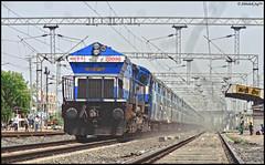 BGKT WDP-4 (Abhishek Jog) Tags: from sc running junction jp late express dust striking et mins towards 42 jaipur ki charging bhopal raising bpl mps jn bhagat bluewhale mso kothi secunderabad 20096 itarsi hbj lhf jpsc wdp4 19713 habibganj misrod mandideep mddp jaipursecunderabad bgkts bhopaljn