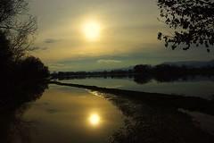 Inondations prés de l'Ill (mamietherese1) Tags: world100f earthmarvels50earthfaves phvalue fleursetpaysages