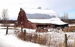 Old Barn (Oram24) Tags: challengegamewinner