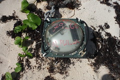 Another Drift Bouy - East Coast Barbuda (hedonism1) Tags: mackie hedonism svhedonism