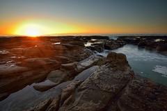 Stillness (Paul Hollins) Tags: ocean seascape sunrise rocks australia newsouthwales aus newcastleeast nikon1635mmf4 nikond750