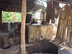 IMG_7957 (alexandre.vingtier) Tags: haiti cap rum nord rhum haitien clairin