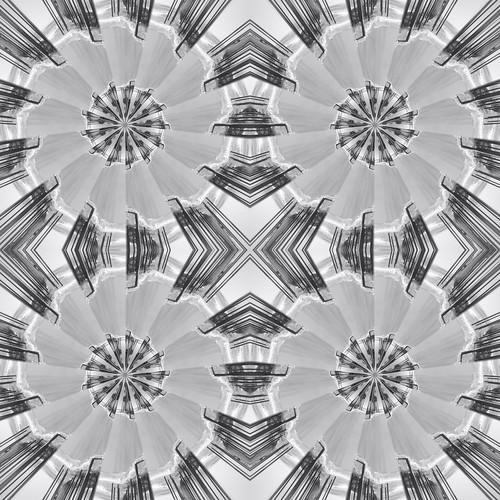Black & White Wallpaper Designs
