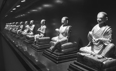 Buddhas (Federico Pitto) Tags: bw d76 pushprocess nikonfe2 rolleirpx400