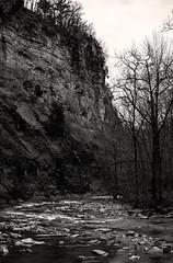 Rugged Taughannock Gorge (LJS74) Tags: blackandwhite bw monochrome creek landscape gorge newyorkstate fingerlakes taughannock stitchedpanorama