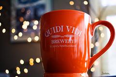 Quidi Vidi Brewery Tour 01 (Tina Dean) Tags: tour brewery 24mm qvb quidividi tinadean imagesfromtheshutter tmdean tinagfw tinamdean