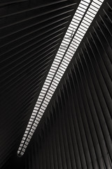 Venus Flytrap (BrianEden) Tags: new nyc travel ny newyork architecture train us fuji unitedstates path manhattan worldtradecenter fujifilm wtc lowermanhattan oculus santiagocalatrava travelphotography transportationhub transithub x100s