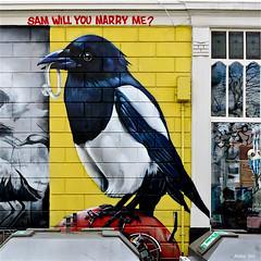 Rotterdam : MeLikePainting (Akbar Sim) Tags: streetart holland netherlands graffiti rotterdam nederland rotjeknor roffa melikepainting akbarsimonse akbarsim