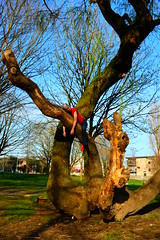 Out On A Limb (eddi_monsoon) Tags: portrait selfportrait self 365 selfie threesixtyfive