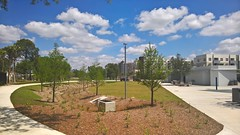 Perry Harvey Park (heytampa) Tags: park tampa florida fl encore perryharvey