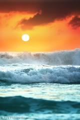 amaneceres-mas-bonitos-del-mundo-7 (luiscasstaeda) Tags: ocean sea sun seascape beach nature water clouds sunrise landscape coast sydney wave australia nsw swell monavale warriewood