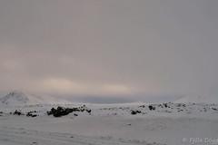 Hellisheii (Fjola Dogg) Tags: winter ice canon island iceland islandia europe sland winterwonderland islande vetur islanda islndia islanti islando evrpa sland islann veturkonungur canonpowershotg7x canong7x
