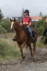 IMG_EOS 7D Mark II201604039698 (David F-I) Tags: horse equestrian horseback horseriding trailriding trailride ctr tehapua watrc wellingtonareatrailridingclub competitivetrailriding sporthorse equestriansport competitivetrailride april2016 tehapua2016 tehapuaapril2016 watrctehapuaapril2016