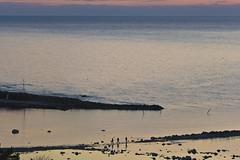 Three fishermen (arkland_swe) Tags: sunset sea fishermen gotland hav fiske snck flundreviken