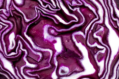 Macro - Cabbage (AliceWilliamsPhotography) Tags: england food abstract macro closeup canon photography photo patterns vegetable lightroom 550d canon550d