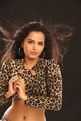 Bollywood Actress Meghna Patel Photos Set-1 (38)