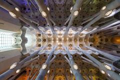 Sagrada Familia (amoeboid) Tags: barcelona familia spain symmetry gaudi sagradafamilia sagrada canon1022mm canon60d