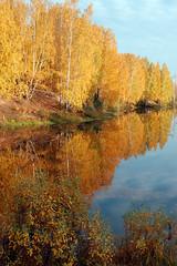 DSC_6076 (Rustam Bikbov) Tags: autumn september 2012    sverdlovskoblast