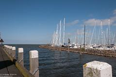 Harbour (Landleven (Irma Lit)) Tags: haven blauw mast friesland ijsselmeer hindeloopen zeilboot geolocation steiger geocity geocountry exif:focallength=18mm camera:make=nikoncorporation camera:model=nikond300 exif:make=nikoncorporation exif:lens=1801050mmf3556 geostate exif:model=nikond300 exif:aperture=11 exif:isospeed=200