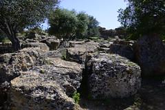 2016-04-17_15-02-32-Nikon D800 (Bernhard Kvaal) Tags: italy valley temples sicily sicilia agrigento