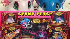 ACROBATIC STUNT PETS Amazing Zhus Circus Time by CoolToys (CoolToys1) Tags: pets animals kids fun mouse toys kid brinquedo nios friendly acrobat juguete ninos zhus cutepets joiet amazingzhus joiets