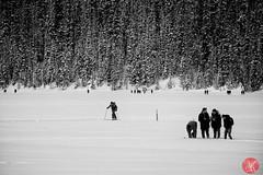 Scenes from Lake Louise 4 (Kasia Sokulska (KasiaBasic)) Tags: travel winter people lake snow canada mountains rockies frozen tourists alberta lakelouise banffnationalpark