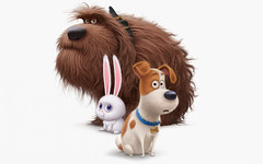 2016 The Secret Life of Pets (blog.arikurniawan) Tags: