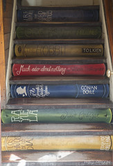 Stairs to knowledge (Pablo Arrigoni) Tags: argentina argentine bar canon eos book stair leer shakespeare el lord read escalera rings doyle libros galeano eduardo tolkien conan borges calafate the cortazar 18135 70d of